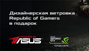 ветровка Republic of Gamers